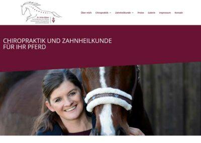 pferdepraxis-suedhessen.de